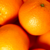 david cook cheltenham photographer bss breakfast oranges 7