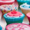 david cook cheltenham bss cup cakes 6